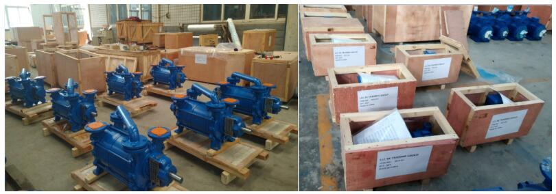 DLV Series Double Stages Water Ring Vacuum Pumps Packing &shipping