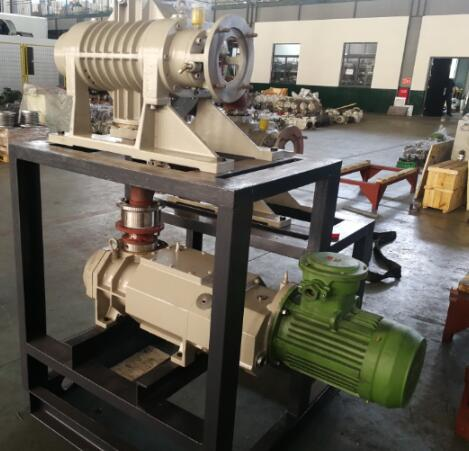 dry screw vacuum pump system
