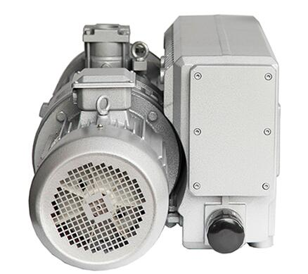 Rotary vane vacuum pump for vacuum packaging