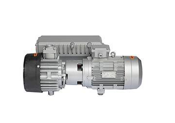 Vacuum rotary vane pump blister packaging