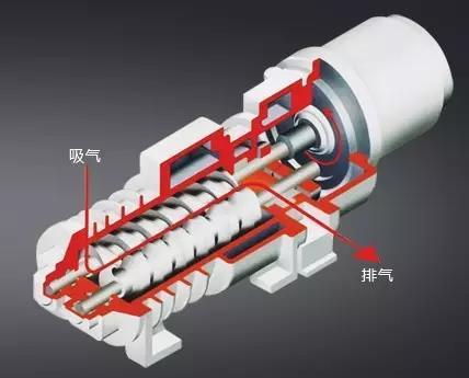 Screw Dry Vacuum PumpWorking Principle