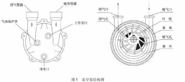 Vacuum pump structure