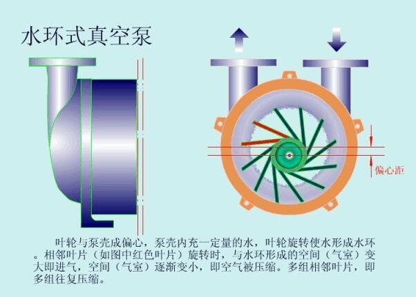 Water Ring Vacuum Pump Full Analysis