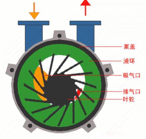 Water Ring Vacuum PumpWorking Principle