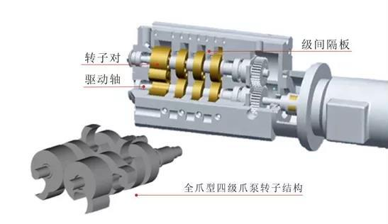 claw type vacuum pump Structure1