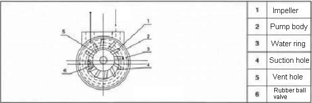 water ring vacuum pump is cantilever structure