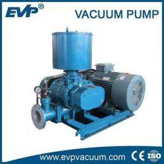 Roots Vacuum Pump- Vacuum Pump - EVP Vacuum Solution!