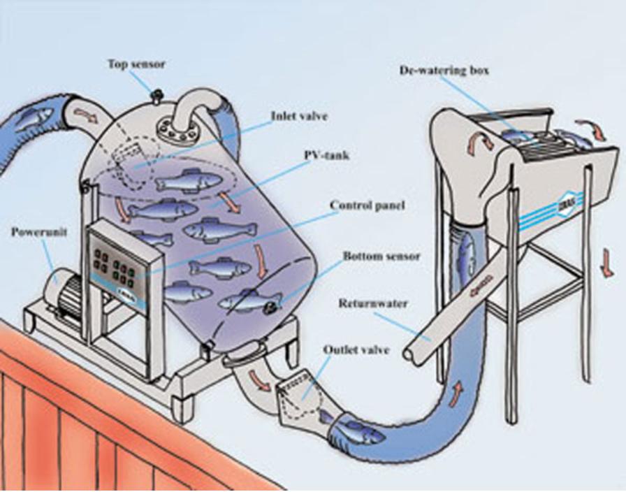 Vacuum-pump-fishing-industry