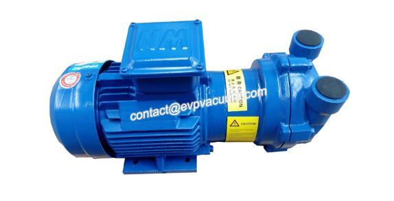 Monoblock liquid ring vacuum pump