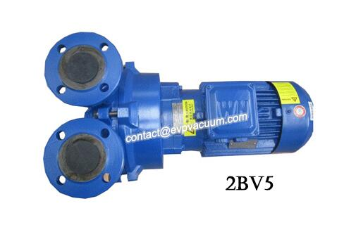 2BV5111 water ring vacuum pump