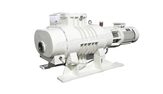 Roots vacuum pump in plasma cleaner