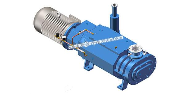 Vacuum pump for vacuum preservation