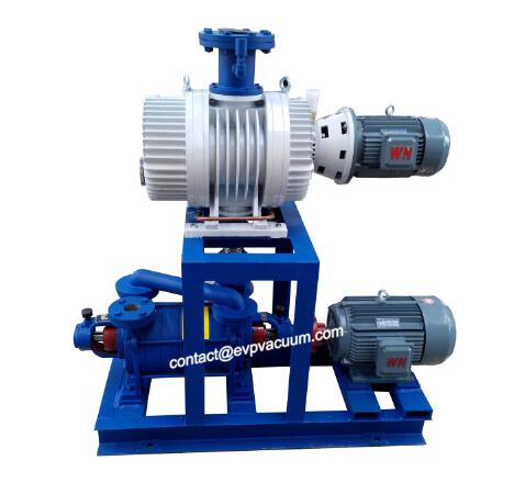 What gases can the vacuum system pump?