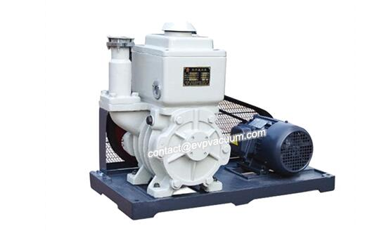 Rotary vane vacuum pump in nuclear power plant operation