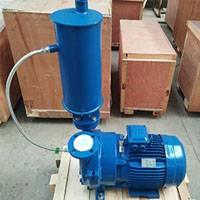 2BV5-110 Liquid Ring Vacuum Pump