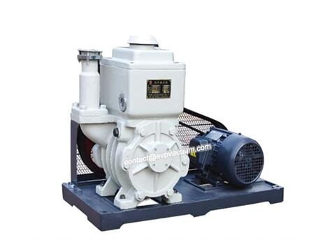 Vacuum pump capable of extracting oxygen-containing gas