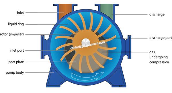 What pumping requirements of liquid ring vacuum pump
