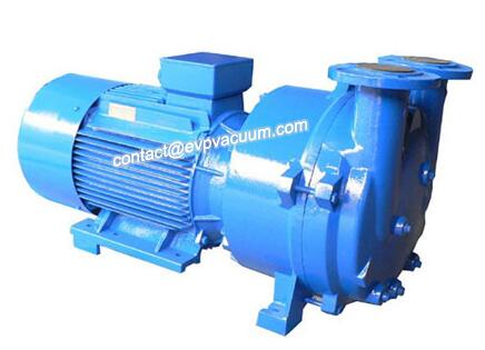 2BV5131 Liquid Ring Vacuum Pump