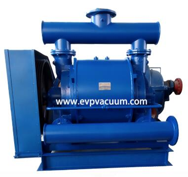 CL 1001 vacuum pump