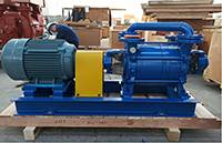 DLV350 Two Stages LR Vacuum Pump Used In Research institute of construction and road Brick Plant