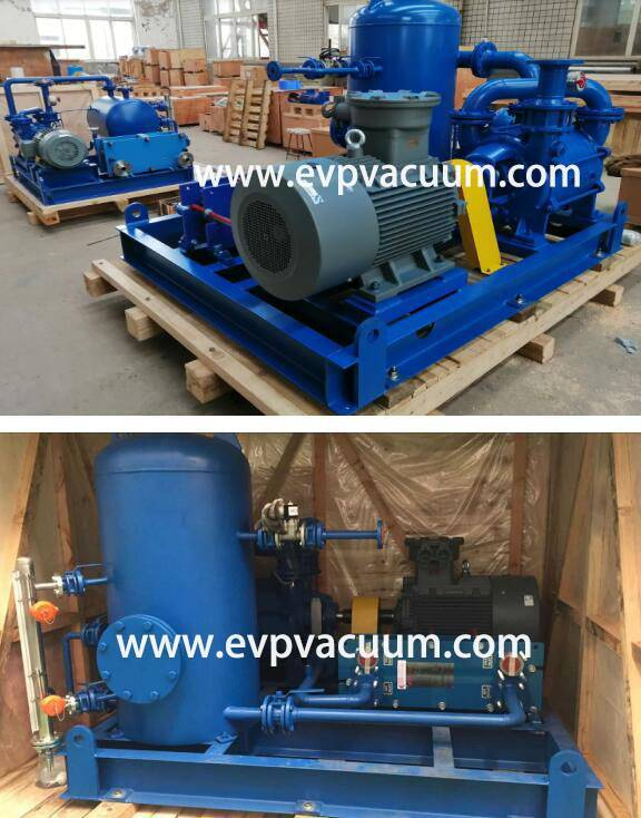 DLV800 Liquid ring Vacuum Pump Close Cycle System Used Palm Oil In Southeast Asia