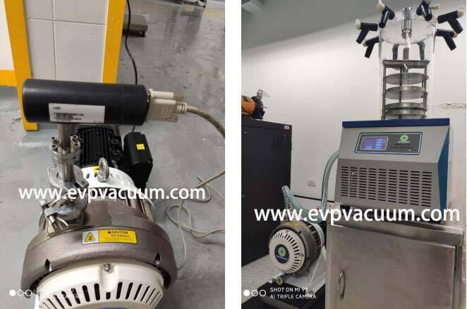 Dry Scroll Vacuum Pump Used In FreezeDryer Plant