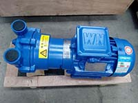 Liquid Ring Vacuum Pump Used in Electric Metal Mould Production in Southeast Asia