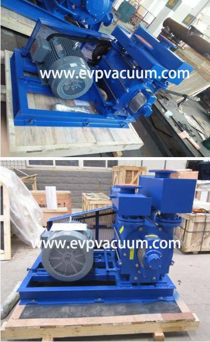Liquid ring vacuum pump Used vacuum filter application in Europe