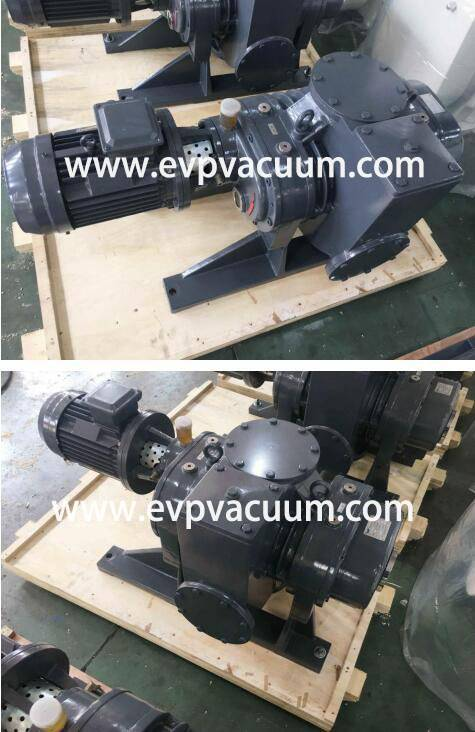 Roots Vacuum Pumps Used in Electric Transformer in Southeast Asia
