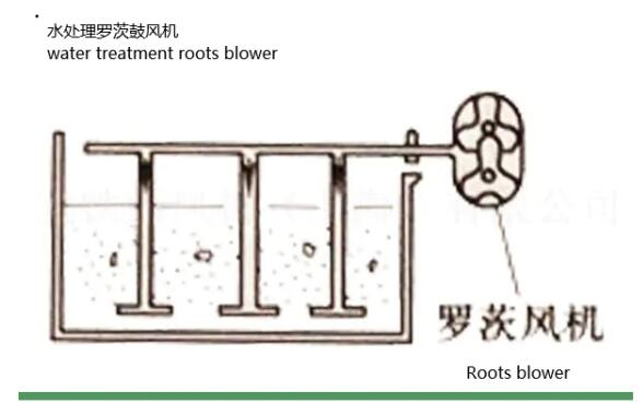 Roots blower in sewage water treatment Application