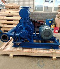 CL1003 Liquid Ring Vacuum Pump Used In Rare earth industries