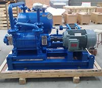 DLV Liquid System Pump Used in Alkalized process