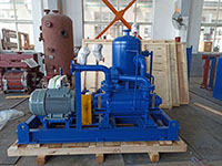 DLV500 Two Stages LR Vacuum Pump Used In Food Processing Factory