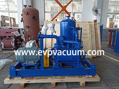 DLV500 Two Stages LR Vacuum Pump Used in Africa Food Processing Factory
