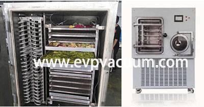 vacuum freeze-drying technology