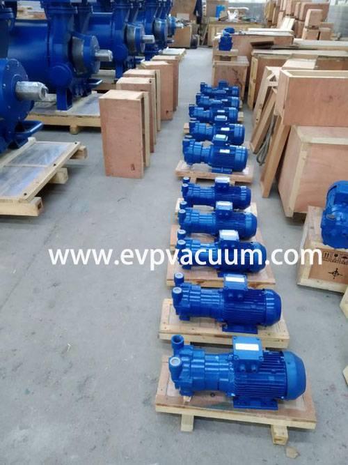 Vacuum pump for vacuum infusion