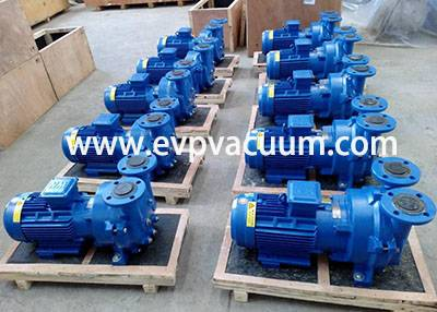 liquid ring vacuum pump used In Daily chemical industry in Asia
