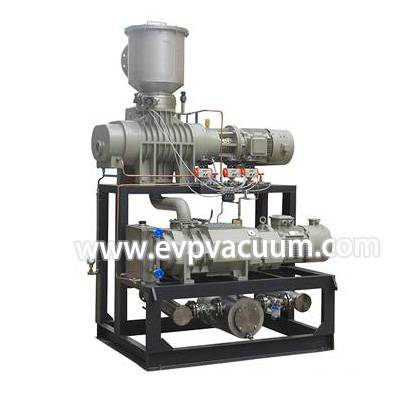 Dry screw vacuum pump + roots pump