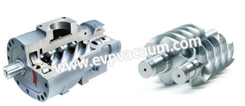 Dry screw vacuum pump rotor