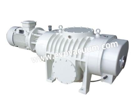 Roots vacuum pump of pump chamber
