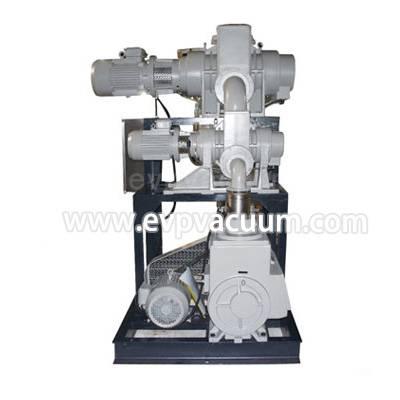 Rotary vane vacuum pump + roots pump