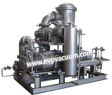oil-free vacuum pump system