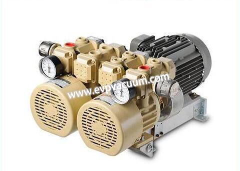 Oil-free rotary vane vacuum pumps