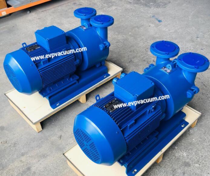 Selection criteria for vacuum pumps