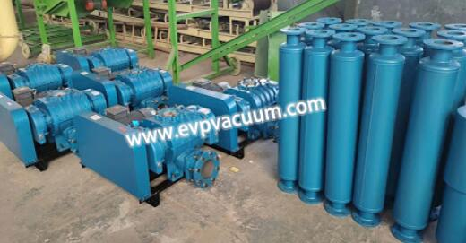 What type of Roots blower is used feed industry