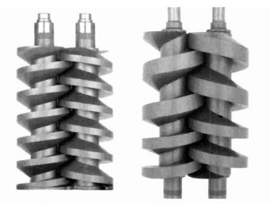 Screw vacuum pump of structure