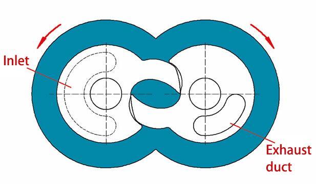 Claw vacuum pump of rotor