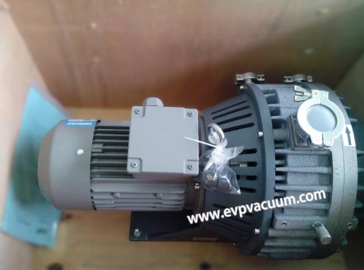 dry vacuum pump of two structures
