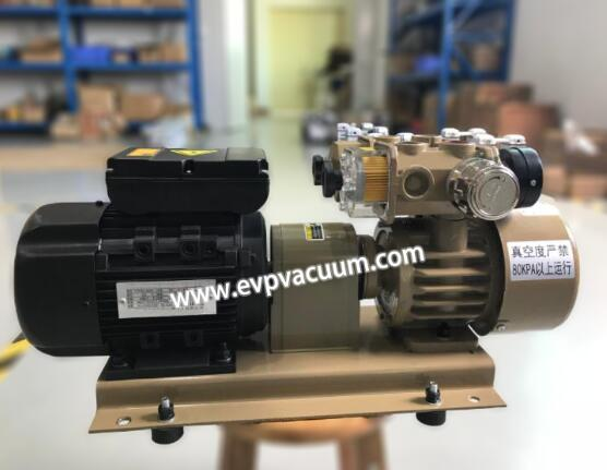 Single stage oil-free vacuum pump