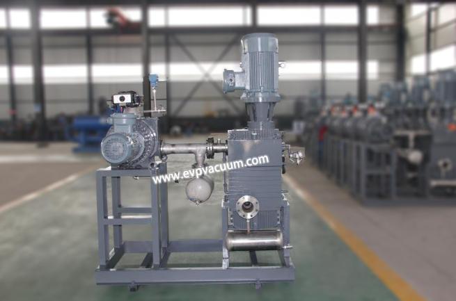 dry vacuum pump unit